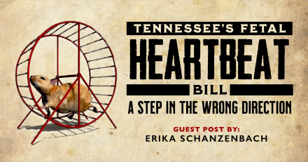 Tennessee Fetal Heartbeat Bill—A Step in the Wrong Direction